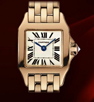 Cartier Santos Demoiselle Mini (RG / Silver/ RG Bracelet)