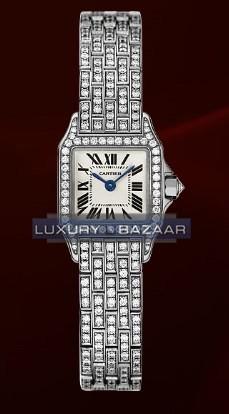 Cartier Santos Demoiselle Mini (WG-Diamonds/ Silver/WG-Diamonds)