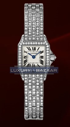 Cartier Santos Demoiselle Mini (WG-Diamonds/ Silver/WG-Diamonds)