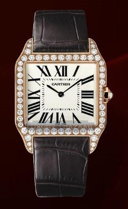 Cartier Santos Dumont Large (RG- Diamonds / Silver / Leather)