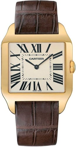 Cartier Santos Dumont Large (YG / Silver / Leather)
