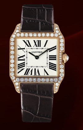 Cartier Santos Dumont Small (RG- Diamonds / Silver / Leather)