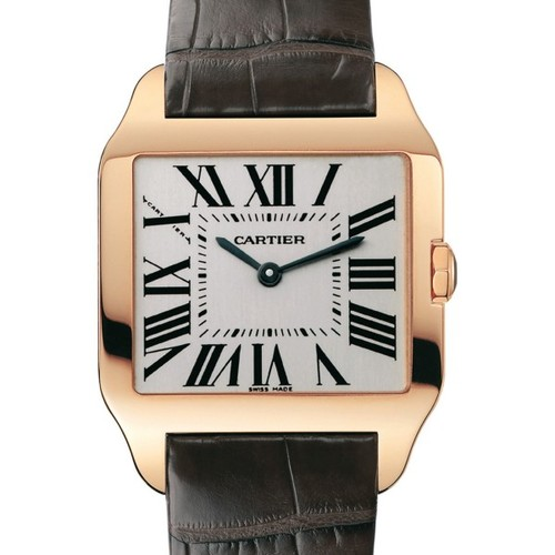 Cartier Santos Dumont Small (RG / Silver / Leather)