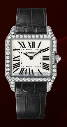 Cartier Santos Dumont Small (WG- Diamonds / Silver / Leather)