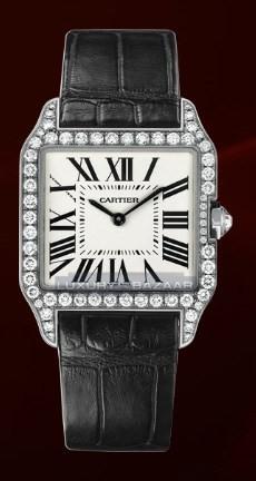 Cartier Santos Dumont Small (WG- Diamonds / Silver / Leather)