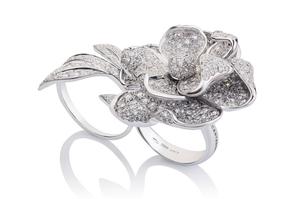Cantamessa Rosa Inglese white Ring R20092